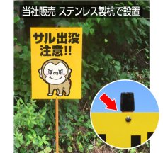 画像6: 犬の散歩禁止区域【看板】 (6)