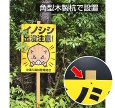 画像7: 犬の散歩禁止区域【看板】 (7)