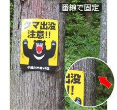 画像8: 犬の散歩禁止区域【看板】 (8)