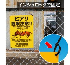 画像9: 犬の散歩禁止区域【看板】 (9)